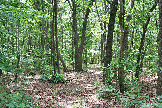 acreage for sale Gilmer County
