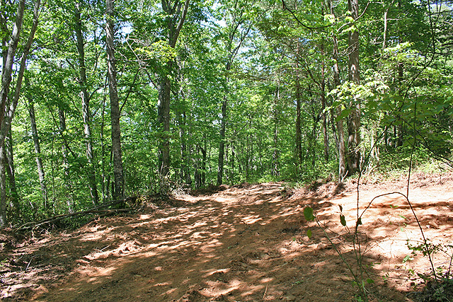 Land for sale with view Lumpkin County