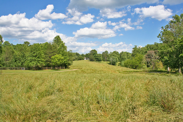 pastureland for sale Dahlonega