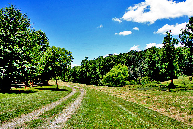 farms for sale Dahlonega