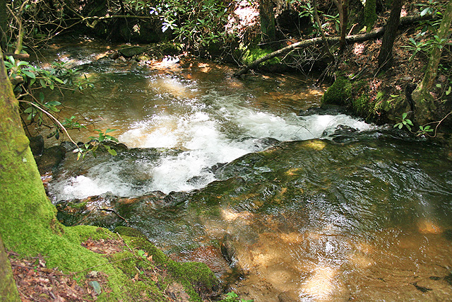 Georgia trout stream property